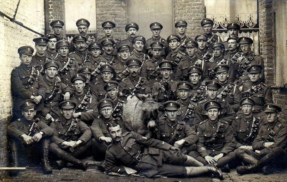 Battalion Transport, 9th Royal Irish Fusiliers, Mouscron, 23 November 1918